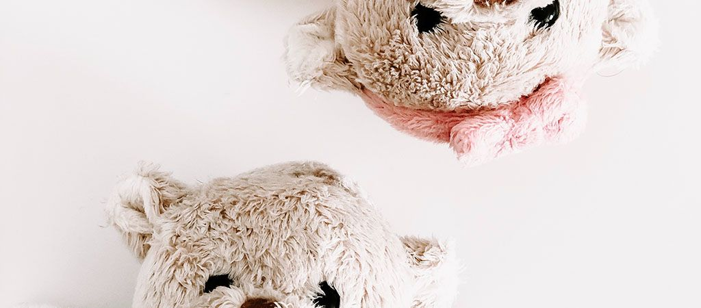 about-teddy
